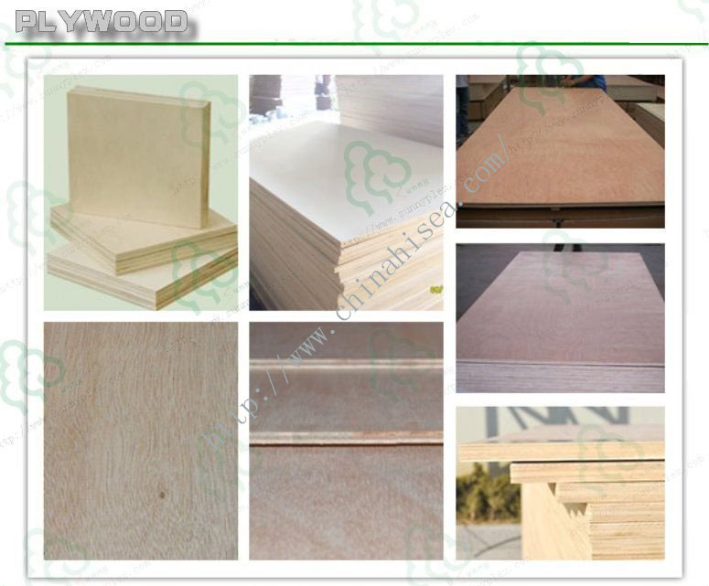 Moisture Resistant Wood Plywood Concrete Building Template