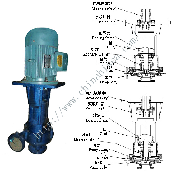 CL Marine Vertical Pump