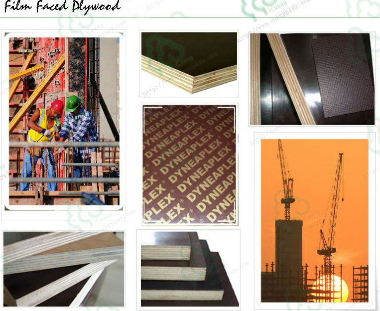 China construction Plywood formwork