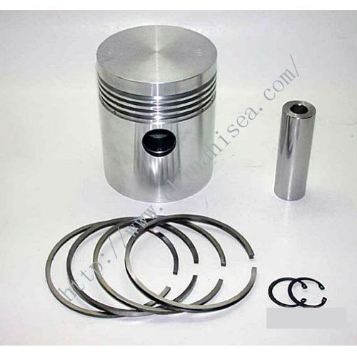 Engine piston and piston ring.jpg