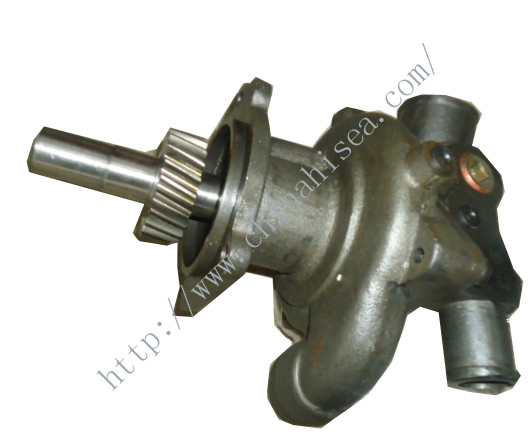 Cummins water pump 3098964
