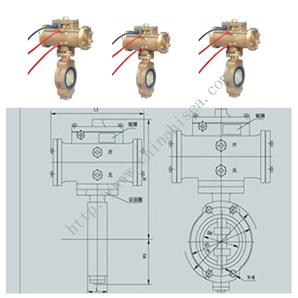 Pneumatic Marine Butterfly Valve Pictures and Drawing