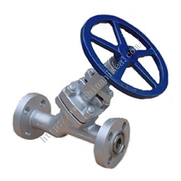 Y Type Globe Valve Sample Detailed Picture