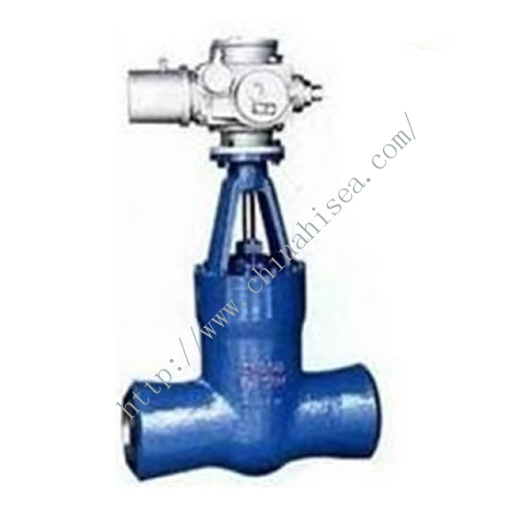 Electric Welding Gate Valve Sample