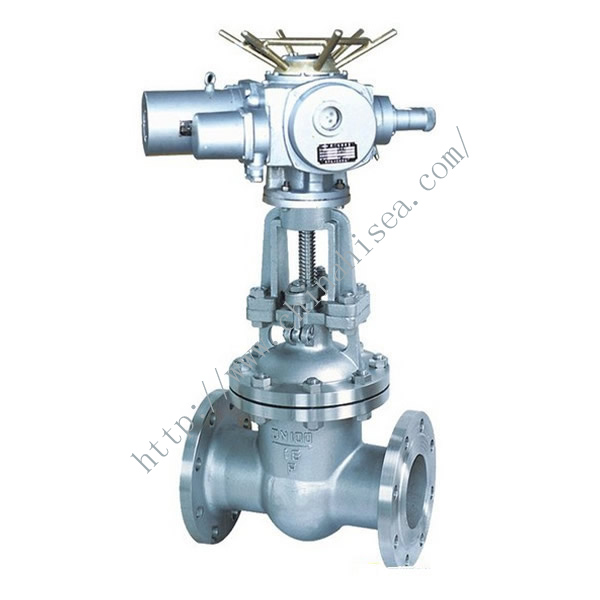 Electric Control Gate Valve Sample in Factory