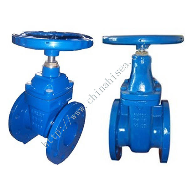 Rising Stem Cast Iron Gate Valve Different Side