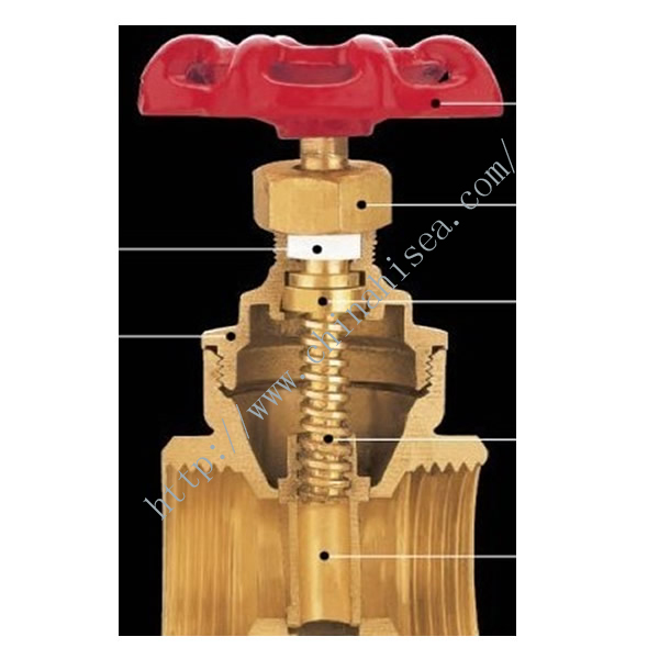 Brass Screw Thread Gate Valve Inner Side