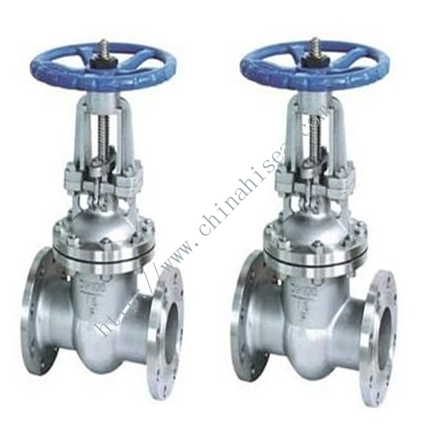 Stainless Steel Flanged Gate Valve DN100