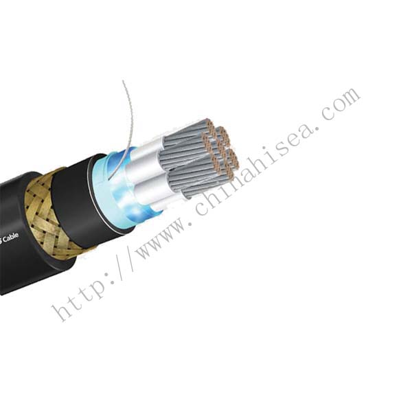 IEEE 1580 Type P 1kV Flame retardant Power Cable show.jpg