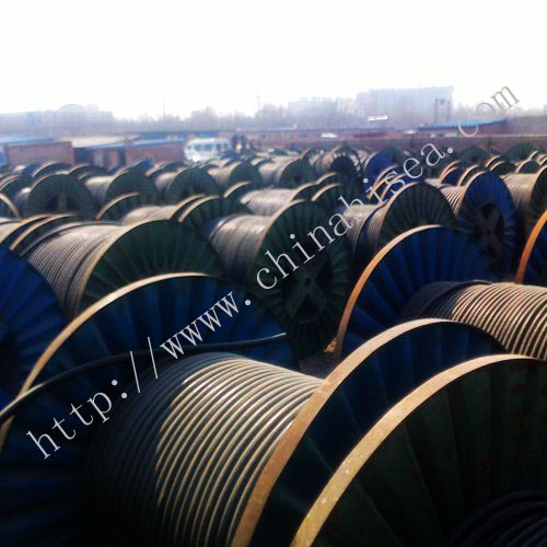 marine cable show.jpg