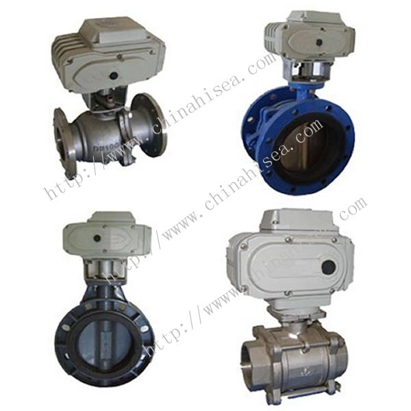 China Electric Valve Actuator With Valve