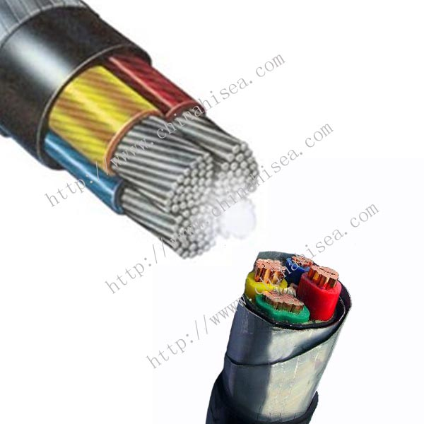 1KV BS 6883 Armored Power & Control Cable sample.jpg