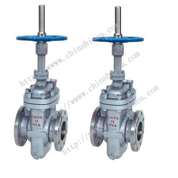 Natural Gas Flat Gate Valve Sample