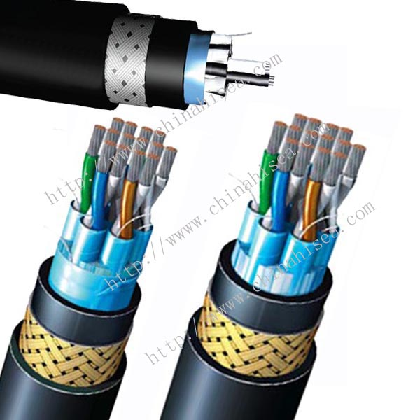 250V BS 6883 Individual Screen Instrumentation & Control Cable sample.jpg