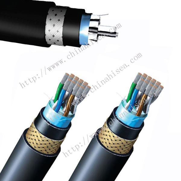 250V BS 7917 Armored Instrumentation & Control Cable sample.jpg