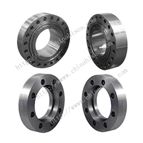 Stainless Steel Swivel Ring Flanges