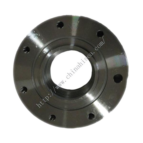 A carbon steel sw flanges