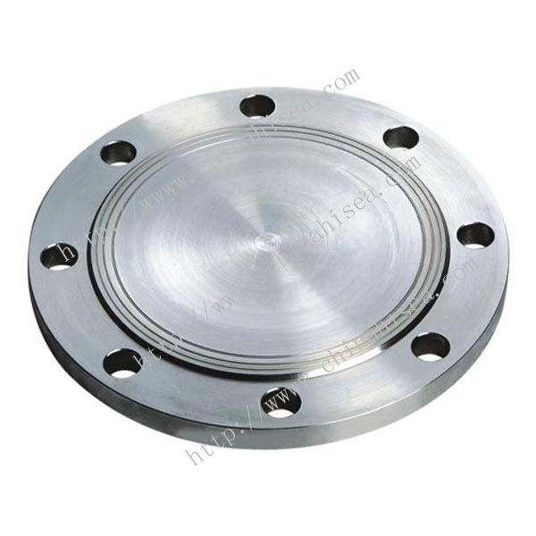 DIN 2527 Alloy Steel BL Flanges