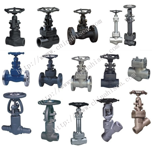 Forged Steel Valve Different Types