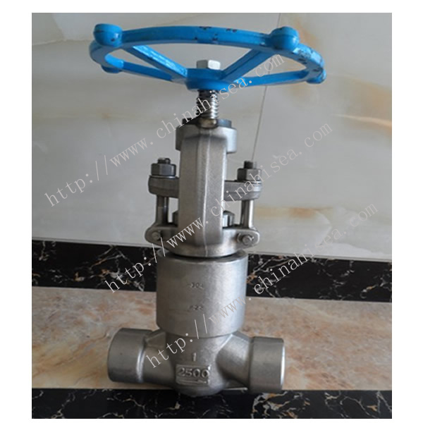 High Pressure Globe Valve Sample