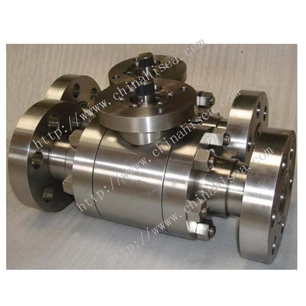 Forged Steel Floating Ball Valve Sample