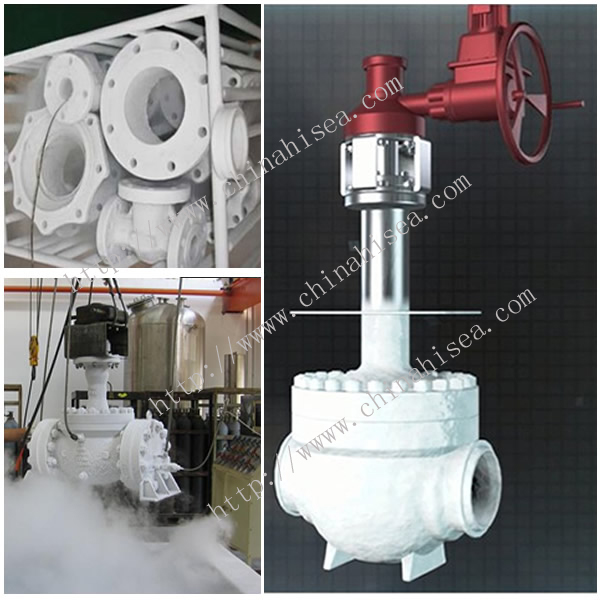Cryogenic Ball Valve Test and Sample In Warehouse