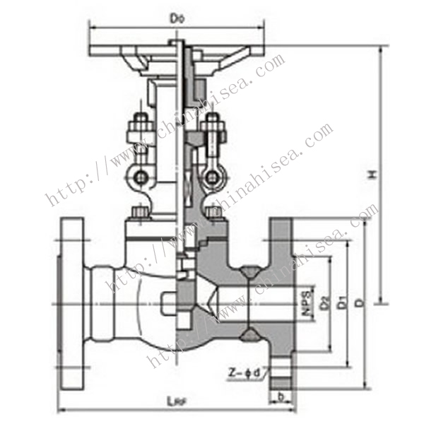 Forged Steel Globe Valve Drawing Picture