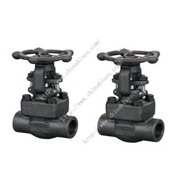 API Forged Steel Globe Valve