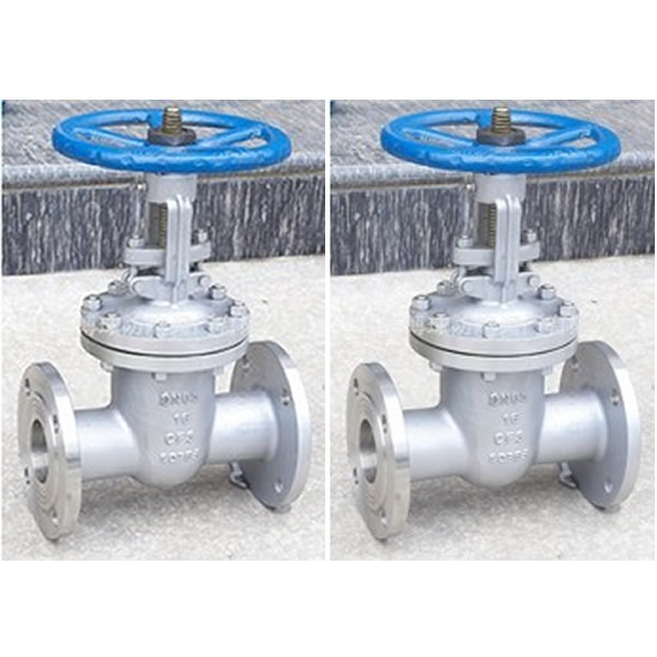 API 600 Stainless Steel Gate Valve Sample.jpg